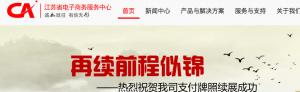 国资背景支付公司江苏CA发布有关支付牌照对外转让传闻的公告 ...