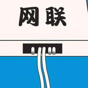 提振信心!网联平台春节交易笔数、金额双双再增长