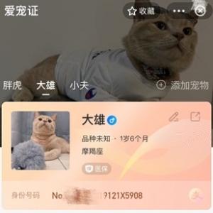 """上支付宝可为宠物建电子""""身份证"""",""""豆豆""""成全国最流行的宠物名字 ..."""