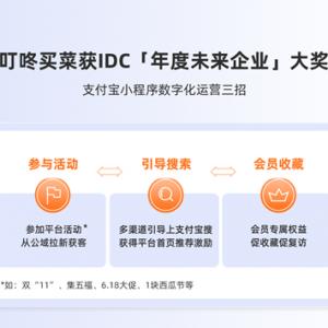 """叮咚买菜摘获IDC年度未来企业  支付宝""""搜索+收藏""""是决胜密码 ..."""